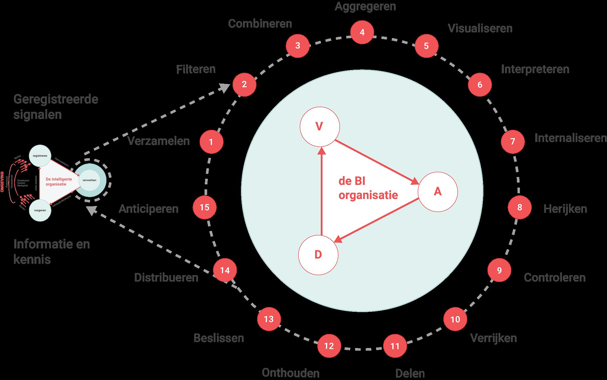 de BI cyclus bestaat uit 15 stappen