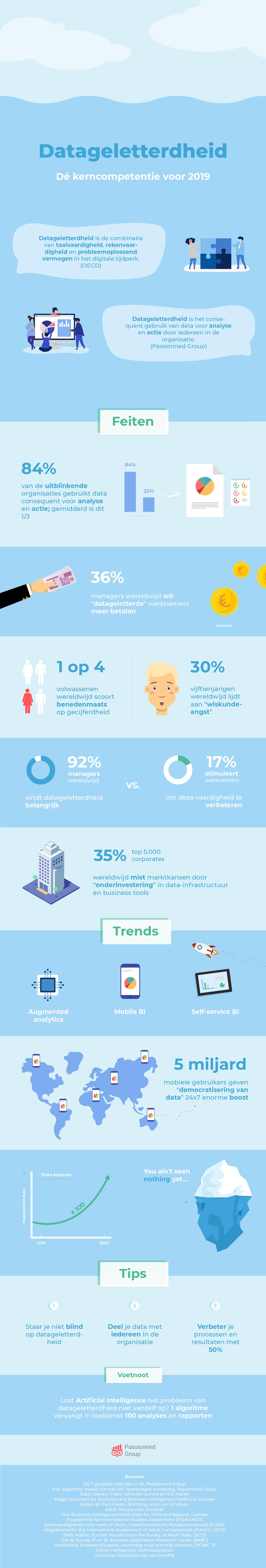 Infographic over datageletterdheid