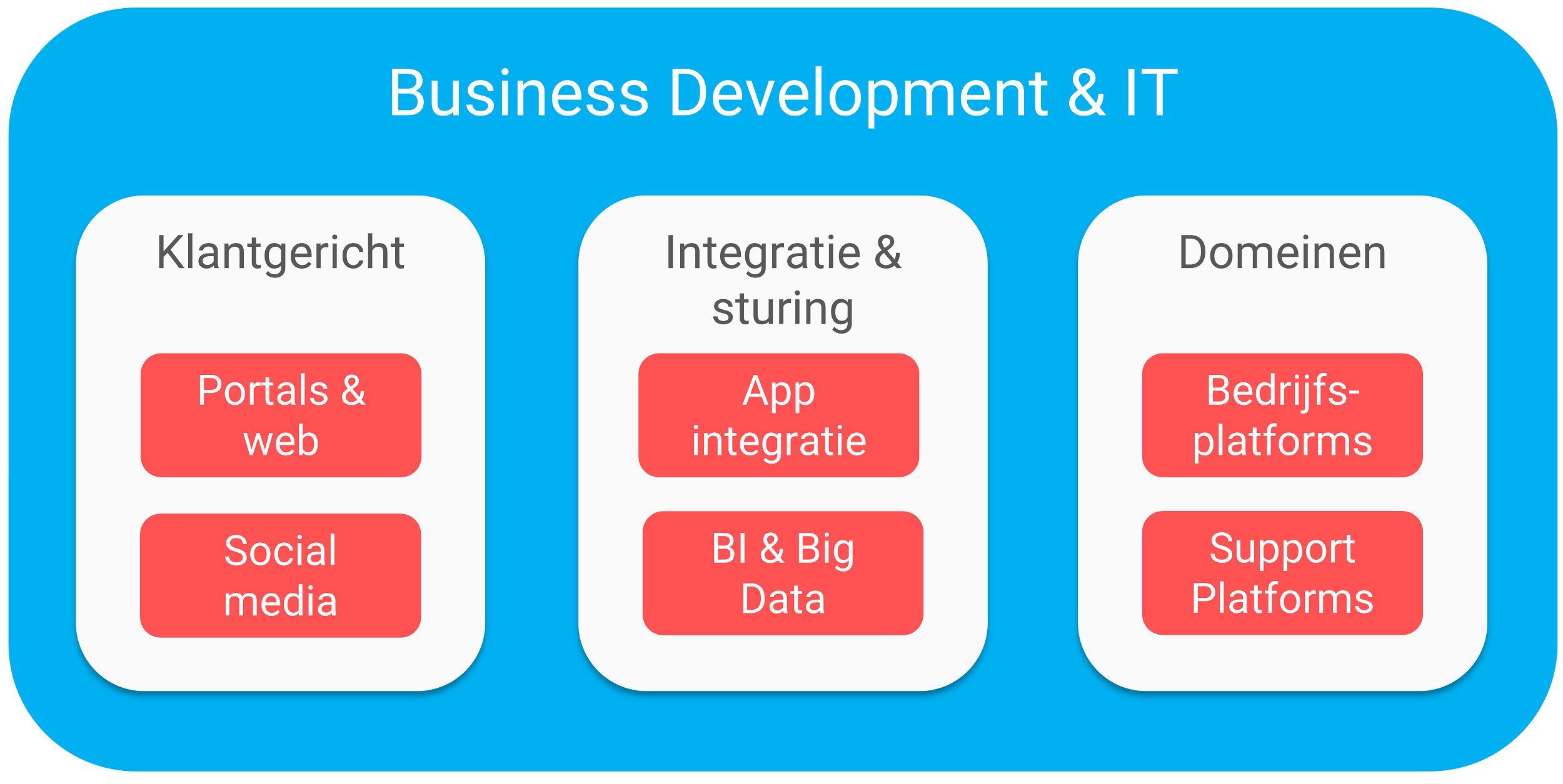 IT Business development