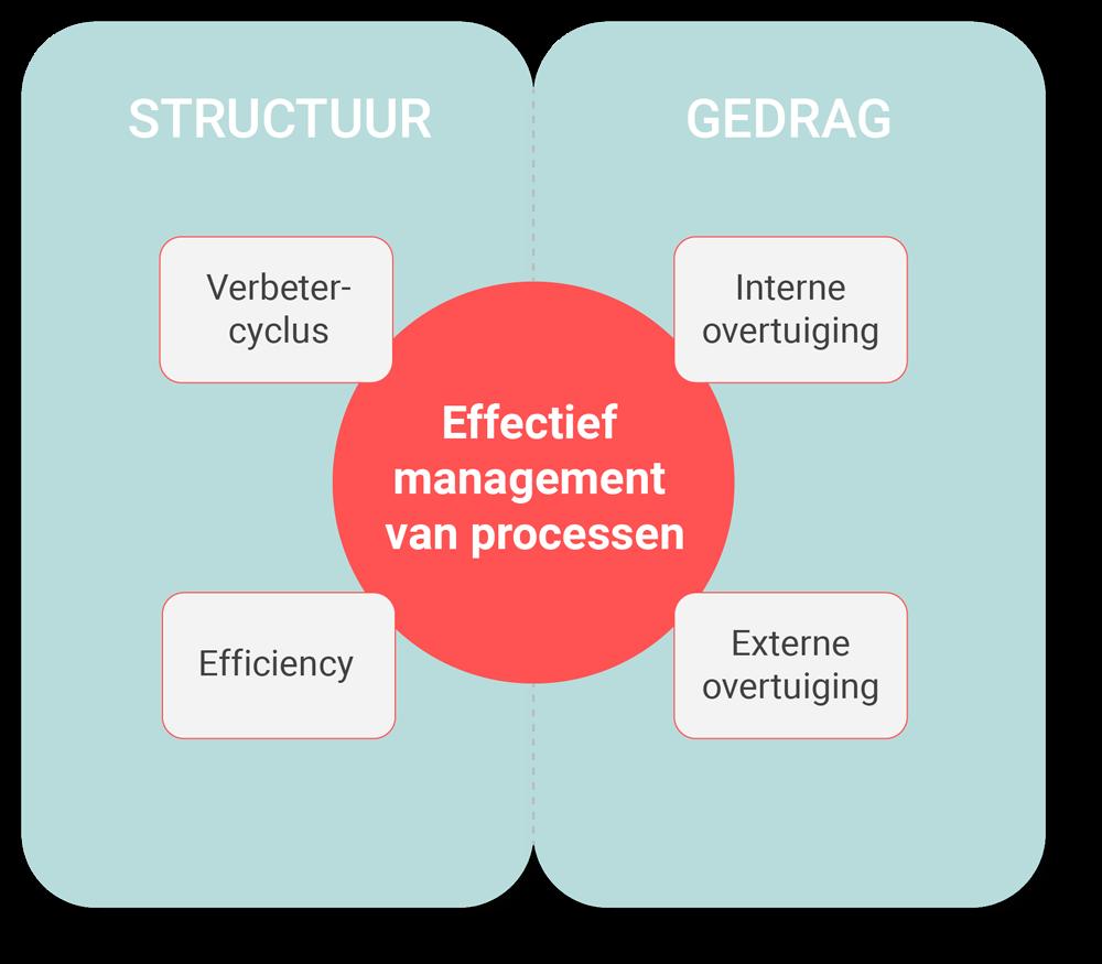 structuurkant en een gedragskant management van processen